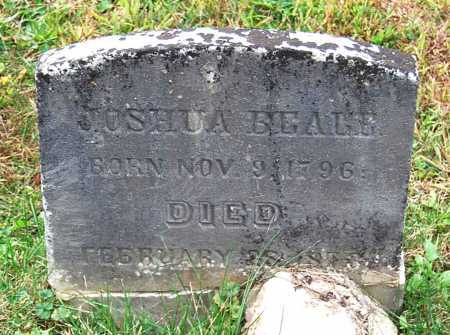 BEALE, JOSHUA - Juniata County, Pennsylvania | JOSHUA BEALE - Pennsylvania Gravestone Photos