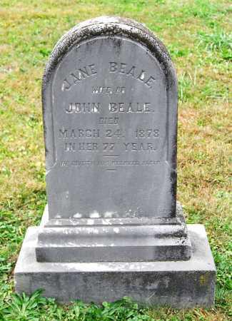BEALE, JANE - Juniata County, Pennsylvania | JANE BEALE - Pennsylvania Gravestone Photos