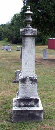 BEAR, ABNER S. - Juniata County, Pennsylvania   ABNER S. BEAR - Pennsylvania Gravestone Photos