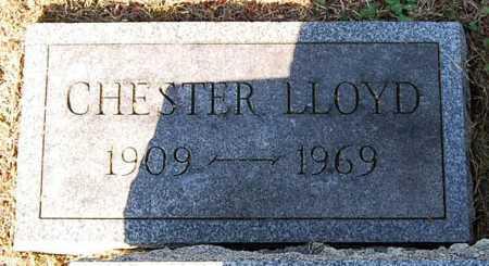BEAVER, CHESTER LLOYD - Juniata County, Pennsylvania | CHESTER LLOYD BEAVER - Pennsylvania Gravestone Photos