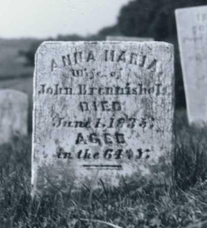BRANNISHOLS, ANNA MARIA - Juniata County, Pennsylvania | ANNA MARIA BRANNISHOLS - Pennsylvania Gravestone Photos