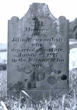 BRANNISHOLS, JOHN - Juniata County, Pennsylvania | JOHN BRANNISHOLS - Pennsylvania Gravestone Photos
