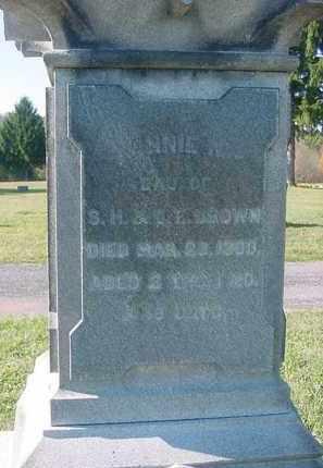 BROWN, ANNIE N - Juniata County, Pennsylvania | ANNIE N BROWN - Pennsylvania Gravestone Photos