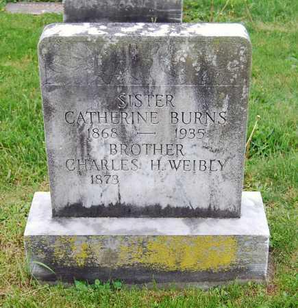 BURNS, CATHERINE - Juniata County, Pennsylvania   CATHERINE BURNS - Pennsylvania Gravestone Photos