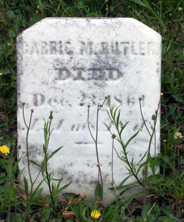 BUTLER, CARRIE M. - Juniata County, Pennsylvania   CARRIE M. BUTLER - Pennsylvania Gravestone Photos