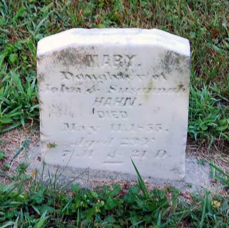 HAHN, MARY - Juniata County, Pennsylvania | MARY HAHN - Pennsylvania Gravestone Photos