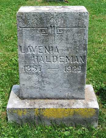 HALDEMAN, LAVENIA - Juniata County, Pennsylvania | LAVENIA HALDEMAN - Pennsylvania Gravestone Photos