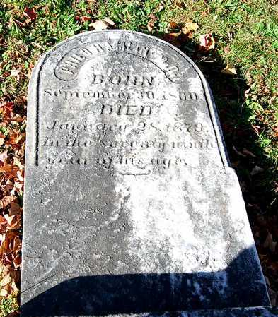 HAMLIN, PHILO - Juniata County, Pennsylvania | PHILO HAMLIN - Pennsylvania Gravestone Photos