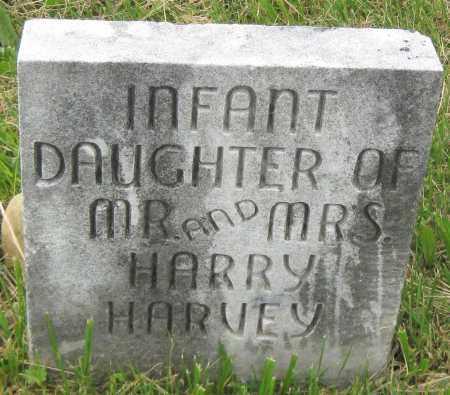HARVEY, (INFANT DAUGHTER) - Juniata County, Pennsylvania | (INFANT DAUGHTER) HARVEY - Pennsylvania Gravestone Photos