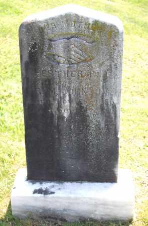 JOHNSON, ESTHER R. - Juniata County, Pennsylvania | ESTHER R. JOHNSON - Pennsylvania Gravestone Photos