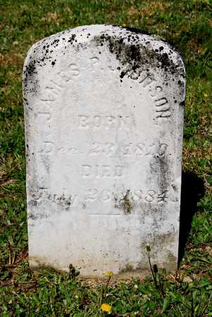 JOHNSON, JAMES PURDY - Juniata County, Pennsylvania | JAMES PURDY JOHNSON - Pennsylvania Gravestone Photos