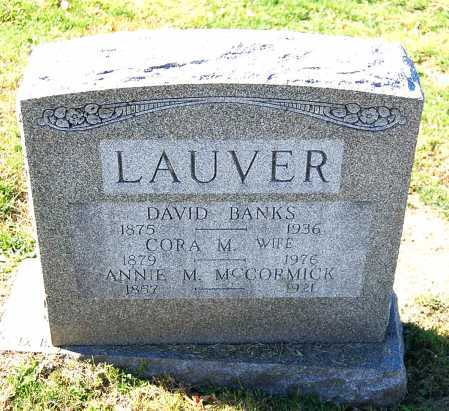 LAUVER, DAVID BANKS - Juniata County, Pennsylvania   DAVID BANKS LAUVER - Pennsylvania Gravestone Photos