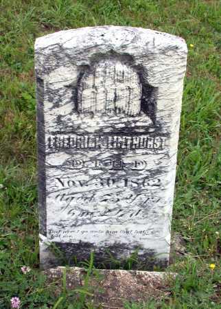 LINTHURST, FREDERICK - Juniata County, Pennsylvania | FREDERICK LINTHURST - Pennsylvania Gravestone Photos