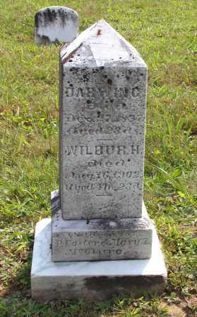MCCLURE, DARWIN C. - Juniata County, Pennsylvania | DARWIN C. MCCLURE - Pennsylvania Gravestone Photos