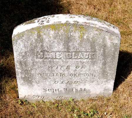 BLACK OKESON, JANE - Juniata County, Pennsylvania   JANE BLACK OKESON - Pennsylvania Gravestone Photos