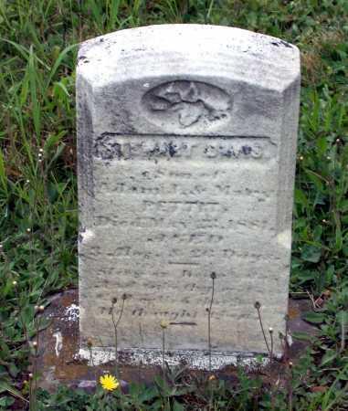 PETTIT, STEWART DAVIS - Juniata County, Pennsylvania | STEWART DAVIS PETTIT - Pennsylvania Gravestone Photos