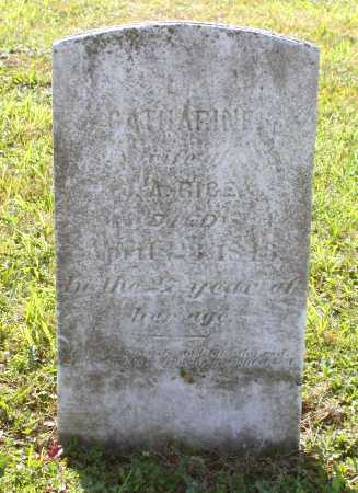 FOOSE RICE, CATHARINE - Juniata County, Pennsylvania | CATHARINE FOOSE RICE - Pennsylvania Gravestone Photos