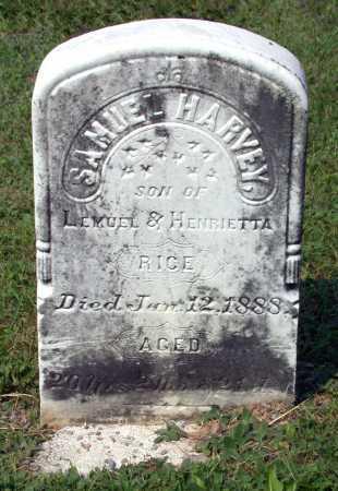 RICE, SAMUEL HARVEY - Juniata County, Pennsylvania | SAMUEL HARVEY RICE - Pennsylvania Gravestone Photos
