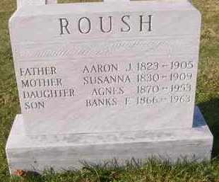 ROUSH, BANKS E. - Juniata County, Pennsylvania | BANKS E. ROUSH - Pennsylvania Gravestone Photos