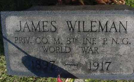 WILEMAN, JAMES - Juniata County, Pennsylvania | JAMES WILEMAN - Pennsylvania Gravestone Photos