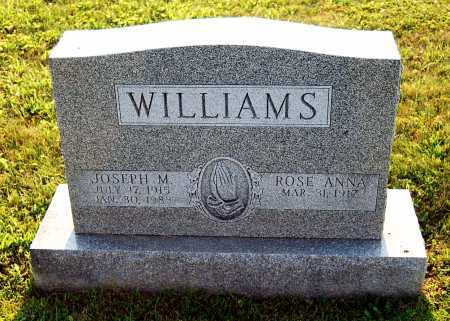 WILLIAMS, JOSEPH M. - Juniata County, Pennsylvania | JOSEPH M. WILLIAMS - Pennsylvania Gravestone Photos