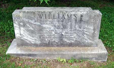 WILLIAMS, THOMAS JAMES - Juniata County, Pennsylvania | THOMAS JAMES WILLIAMS - Pennsylvania Gravestone Photos