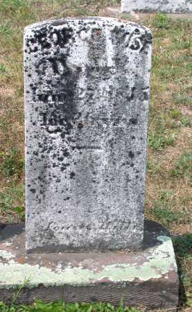 WISE, GEORGE - Juniata County, Pennsylvania   GEORGE WISE - Pennsylvania Gravestone Photos
