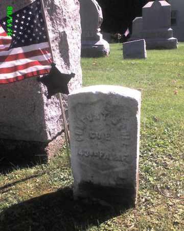 SCULL (CW), COMFORT - Lackawanna County, Pennsylvania | COMFORT SCULL (CW) - Pennsylvania Gravestone Photos