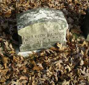 BUSHONG, ANNA KEEN - Lancaster County, Pennsylvania | ANNA KEEN BUSHONG - Pennsylvania Gravestone Photos