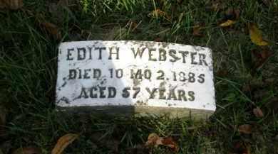 WEBSTER, EDITH - Lancaster County, Pennsylvania | EDITH WEBSTER - Pennsylvania Gravestone Photos
