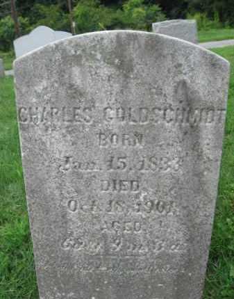 GOLDSCHMIDT, CHARLES - Lebanon County, Pennsylvania | CHARLES GOLDSCHMIDT - Pennsylvania Gravestone Photos