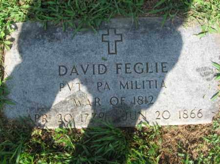 FEGLIE, PVT.DAVID - Lehigh County, Pennsylvania | PVT.DAVID FEGLIE - Pennsylvania Gravestone Photos