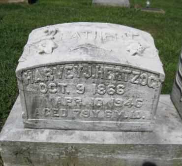 HERTZOG, HARVEY - Lehigh County, Pennsylvania | HARVEY HERTZOG - Pennsylvania Gravestone Photos