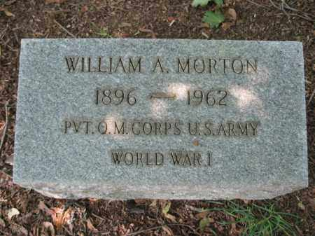 MORTON, WILLIAM A. - Lehigh County, Pennsylvania | WILLIAM A. MORTON - Pennsylvania Gravestone Photos