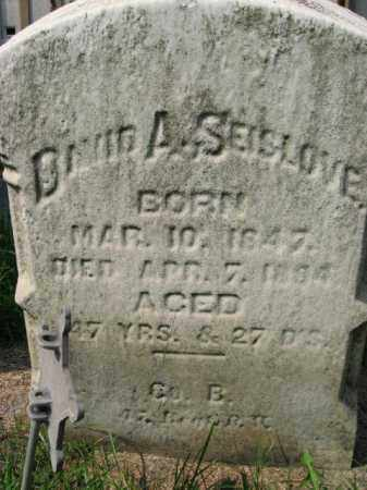SEISLOVE, DAAVID A. - Lehigh County, Pennsylvania | DAAVID A. SEISLOVE - Pennsylvania Gravestone Photos