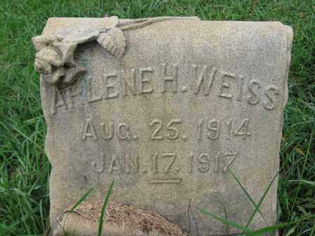 WEISS, ARLENE - Lehigh County, Pennsylvania | ARLENE WEISS - Pennsylvania Gravestone Photos
