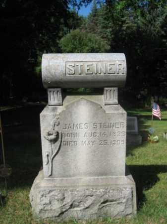 STEINED, JAMES - Luzerne County, Pennsylvania | JAMES STEINED - Pennsylvania Gravestone Photos