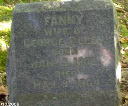 ALLEN, FANNY - Lycoming County, Pennsylvania   FANNY ALLEN - Pennsylvania Gravestone Photos
