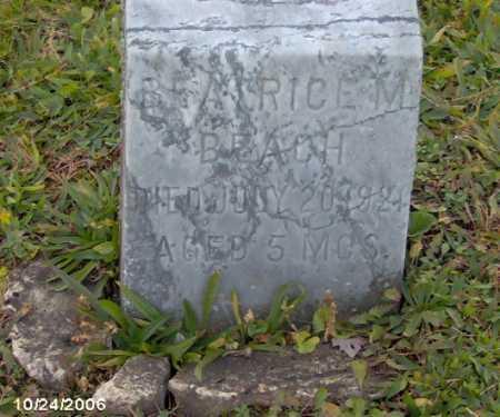 BEACH, BEATRICE - Lycoming County, Pennsylvania | BEATRICE BEACH - Pennsylvania Gravestone Photos