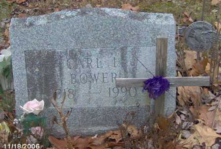 BOWER, CARL - Lycoming County, Pennsylvania   CARL BOWER - Pennsylvania Gravestone Photos