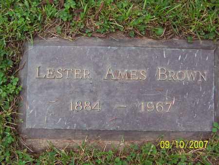 BROWN, LESTER - Lycoming County, Pennsylvania | LESTER BROWN - Pennsylvania Gravestone Photos