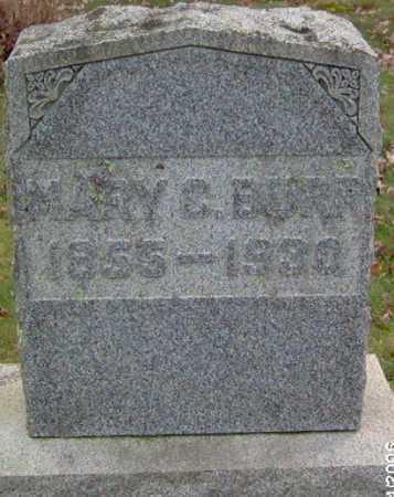 BURR, MARY - Lycoming County, Pennsylvania | MARY BURR - Pennsylvania Gravestone Photos