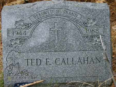 CALLAHAN, TED - Lycoming County, Pennsylvania | TED CALLAHAN - Pennsylvania Gravestone Photos