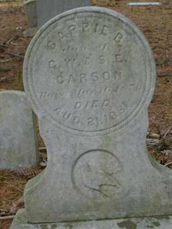 CARSON, CARRIE - Lycoming County, Pennsylvania | CARRIE CARSON - Pennsylvania Gravestone Photos