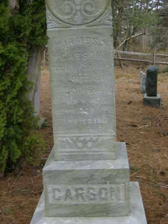 CARSON, JAMES - Lycoming County, Pennsylvania | JAMES CARSON - Pennsylvania Gravestone Photos
