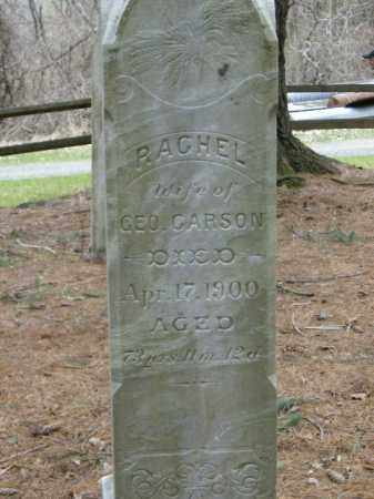 CARSON, RACHEL - Lycoming County, Pennsylvania   RACHEL CARSON - Pennsylvania Gravestone Photos