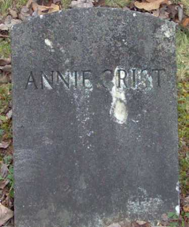 CRIST, ANNIE - Lycoming County, Pennsylvania | ANNIE CRIST - Pennsylvania Gravestone Photos
