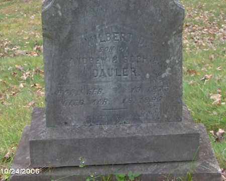 DAULER, WILBERT - Lycoming County, Pennsylvania   WILBERT DAULER - Pennsylvania Gravestone Photos