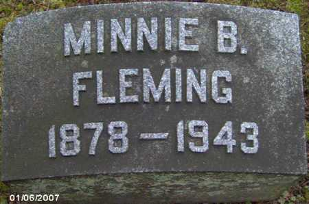 FLEMING, MINNIE - Lycoming County, Pennsylvania | MINNIE FLEMING - Pennsylvania Gravestone Photos