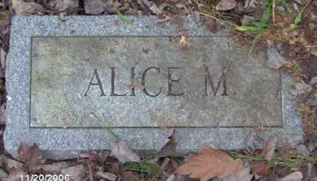 HARMAN, ALICE - Lycoming County, Pennsylvania | ALICE HARMAN - Pennsylvania Gravestone Photos